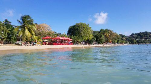 A trip to Agricole Rhum Paradise: la Martinique!